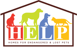 H.E.L.P Homes for Endangered and Lost Pets